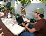 Aprender Español en Malaga Plus